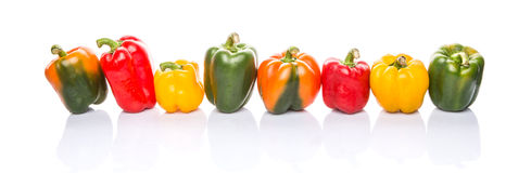 A Row of Colorful Bell Peppers II Royalty Free Stock Photo