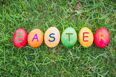Row of Colorful Easter Eggs with Daisy Stock Image