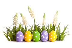 Row of colorful Easter eggs Stock Photography