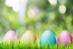 Row of colorful easter eggs Royalty Free Stock Image