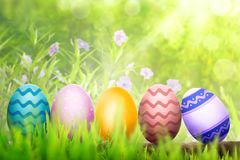 Row of colorful easter eggs on wooden plank Stock Photography