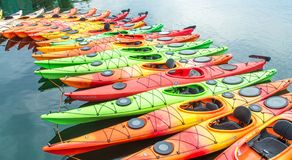 Row of colorful kayaks for rent in the water royalty free stock image