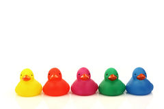 Row of colorful plastic ducklings Royalty Free Stock Photography