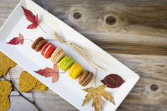 Row of coloured cookies placed in a white oblong plate Stock Photos