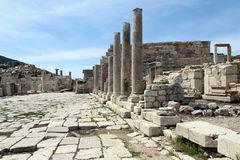 Row of columns Stock Photography
