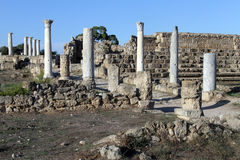 Columns in Salamis Stock Photography