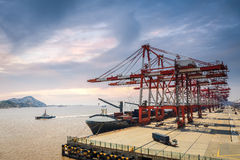 A row of crane in the harbour Stock Photography