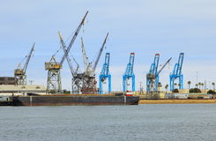 Row of Cranes Royalty Free Stock Photo