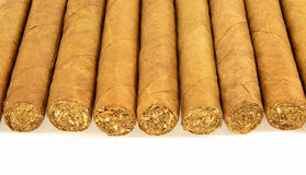 Row of cuban cigars Royalty Free Stock Photography