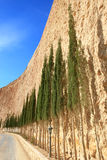 Row of cypresses against a red cliff, Andalusia Royalty Free Stock Photography