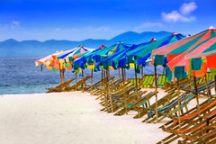 Row of deck chairs. Deck chairs and umbrellas in tropical paradise Royalty Free Stock Photo