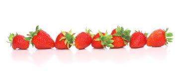 Row of delicious strawberry Stock Photos