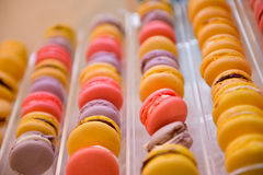 Row of different color of macarons Stock Photo
