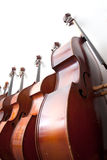 Row of double basses against a wall Royalty Free Stock Images