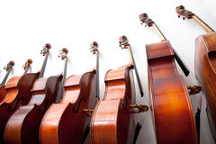 Row of double basses against a wall Stock Images