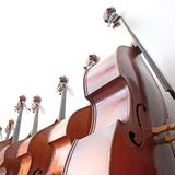 Row of double basses against a wall on square picture. Row of double basses leaning against a wall on square picturen royalty free stock images
