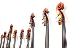 Row of double basses details against a wall Royalty Free Stock Image