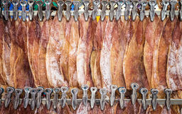 Row of dry squid hang on steel in Thailand market Stock Photography