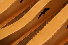 Row of Dulcimers. Made of warm wood showing frets and strings Stock Photo