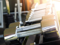 Row of dumbbells Royalty Free Stock Images