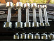 Row of dumbbells Stock Photography