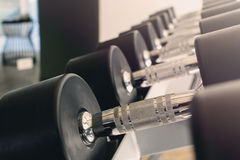 Row of dumbbells in modern sports club Royalty Free Stock Images