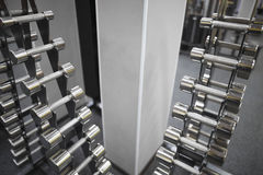 Row of dumbbells. On a rack in gym Royalty Free Stock Image