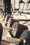 Row of dumbbells in sport club, Royalty Free Stock Photography