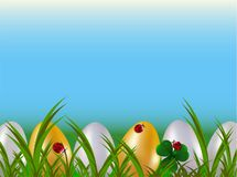 A row of dyed easter eggs in green garden grass with red ladybugs and blue sly. Spring holiday cartoon vector background.  royalty free illustration