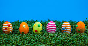 Row of easter eggs on cress Royalty Free Stock Image