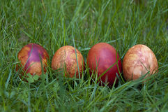 The row of Easter eggs Royalty Free Stock Image