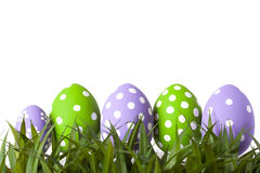 Row of Easter eggs in Fresh Green Grass Stock Photos