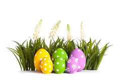 Row of Easter eggs in Fresh Green Grass Royalty Free Stock Images
