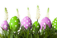 Row of Easter eggs in Fresh Green Grass Royalty Free Stock Photo
