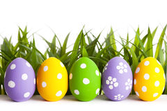 Row of Easter eggs on grass Stock Photography