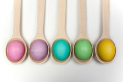 Row of easter eggs on wooden spoons isolated white Royalty Free Stock Image