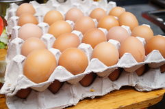 A row of egg Royalty Free Stock Photos