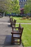 Row of empty bench Stock Image
