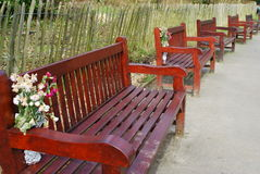 Row of empty benches Royalty Free Stock Photo