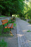 Row of empty benches Stock Images