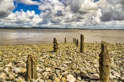A row of eroded wooden posts on a pebbly beach. stock image