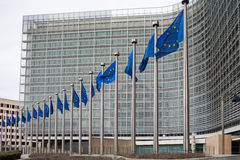 Row of EU European Union flags flying in front of administrative royalty free stock image