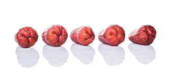 Row Exotic Rose Apple Fruit II Stock Image