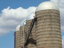 A row of Feed silos Stock Images