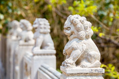 Row of fierce stone lion figures. Laoshan,China 21/04/2016 Row of fierce stone lion figures outside handrail decoration in a temple in Laoshan,China on a sunny royalty free stock image