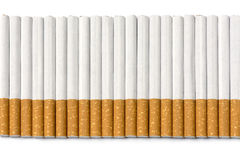 Row of filter cigarettes on white background Royalty Free Stock Photography