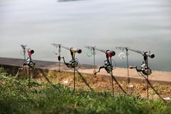 Row of fishing rods Stock Image