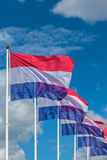 Row of five Dutch national flags Stock Images