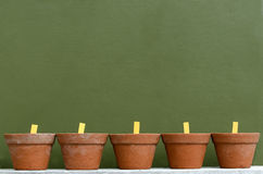 A row of five empty flower and plant pots. Against a green wall with copy and wording space Royalty Free Stock Photo