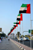Row of Flags in Dubai Royalty Free Stock Images